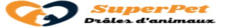 SuperPet : Drôles d'Animaux - Photos et vidéos - Forum - Blog